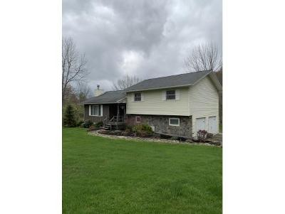 Owego Single Family Home For Sale: 2249 Hullsville Road