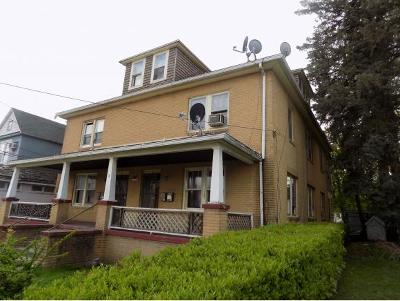 Endicott Multi Family Home For Sale: 8 Madison Avenue