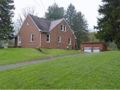 Endicott Single Family Home For Sale: 1823 Union Center Maine Highway