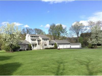 Apalachin Single Family Home For Sale: 2065 Marshland Road