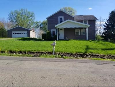 Broome County, Cayuga County, Chenango County, Cortland County, Delaware County, Tioga County, Tompkins County Single Family Home For Sale: 1309 Echo Rd