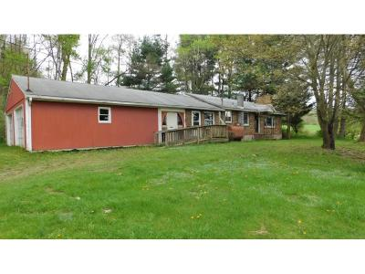 Apalachin Single Family Home For Sale: 1341 Jewett Hill Rd