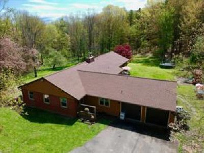 Broome County, Cayuga County, Chenango County, Cortland County, Delaware County, Tioga County, Tompkins County Single Family Home For Sale: 741 Echo Rd