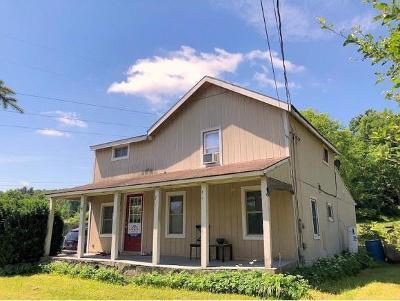 Owego Single Family Home For Sale: 392 Catatonk Creek Road