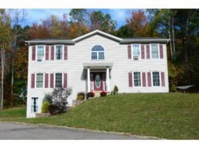 Broome County, Cayuga County, Chenango County, Cortland County, Delaware County, Tioga County, Tompkins County Single Family Home For Sale: 89 Honey Hollow Rd.