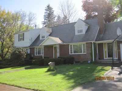 Binghamton Single Family Home For Sale: 3 Chapin Street