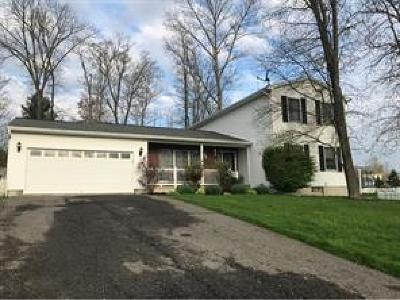 Binghamton Single Family Home For Sale: 45 Clearview Place