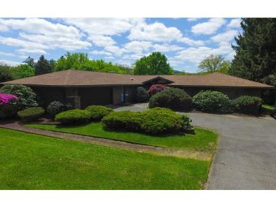 Broome County, Cayuga County, Chenango County, Cortland County, Delaware County, Tioga County, Tompkins County Single Family Home For Sale: 301 Riverside Drive