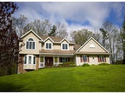 Binghamton Single Family Home For Sale: 15 Overbrook Dr
