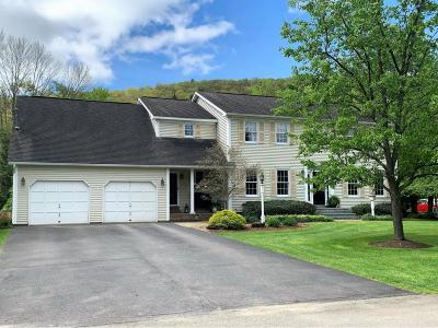 Binghamton Single Family Home For Sale: 94 Wisconsin Drive