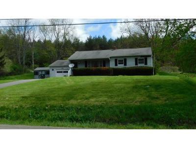 Endicott Single Family Home For Sale: 144 Lewis Street