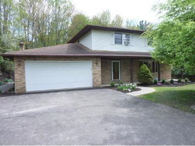 Vestal Single Family Home For Sale: 2608 Princeton Drive