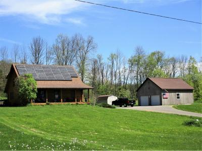 Broome County, Cayuga County, Chenango County, Cortland County, Delaware County, Tioga County, Tompkins County Single Family Home For Sale: 109 Buckley Hollow Road