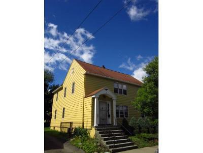 Binghamton Multi Family Home For Sale: 19 Goethe Street