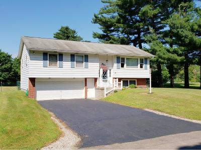 Apalachin Single Family Home For Sale: 84 Marshland Rd Ext
