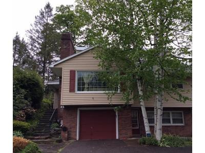 Binghamton Single Family Home For Sale: 4 Vincent Ct