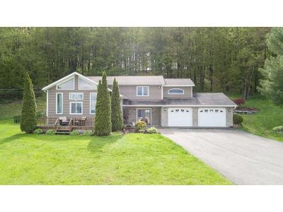 Broome County, Cayuga County, Chenango County, Cortland County, Delaware County, Tioga County, Tompkins County Single Family Home For Sale: 1364 Arbor Glade Road