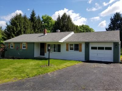 Apalachin Single Family Home For Sale: 59 Glann Road