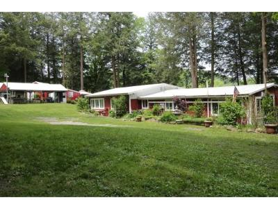 Broome County, Cayuga County, Chenango County, Cortland County, Delaware County, Tioga County, Tompkins County Single Family Home For Sale: 315 State Route 26