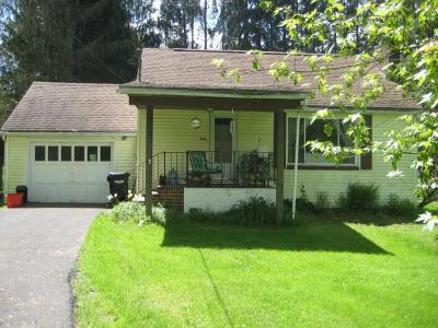 Apalachin Single Family Home For Sale: 2852 Marshland Rd