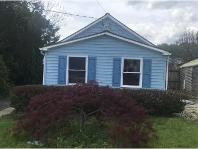 Johnson City Single Family Home For Sale: 151 N Hudson