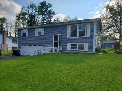 Binghamton Single Family Home For Sale: 249 Mary Dr.