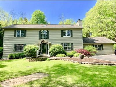 Vestal Single Family Home For Sale: 328 West Hill