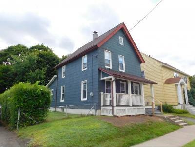 Binghamton Single Family Home For Sale: 17 Goethe Street