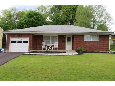 Endwell Single Family Home For Sale: 329 Norton Ave