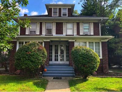Binghamton Multi Family Home For Sale: 708 Chenango Street