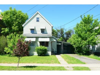 Binghamton Single Family Home For Sale: 66 Thorp Street