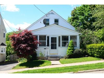 Endicott Single Family Home For Sale: 117 N. Jackson Avenue