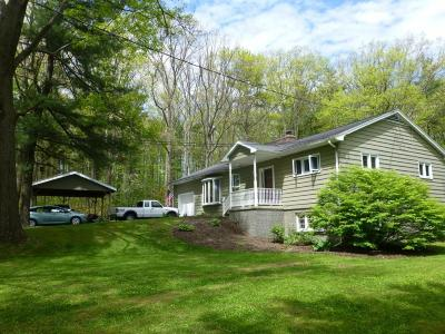 Endicott Single Family Home For Sale: 459 Bornt Hill Rd