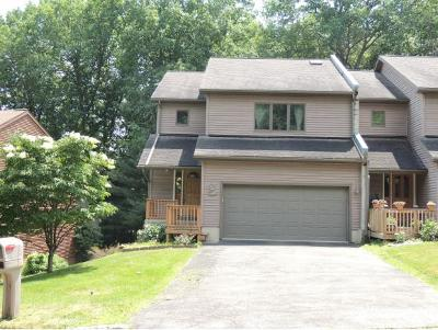 Vestal Single Family Home For Sale: 531 Clubhouse Road