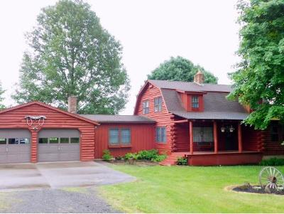Endicott Single Family Home For Sale: 318 Bean Hill Road