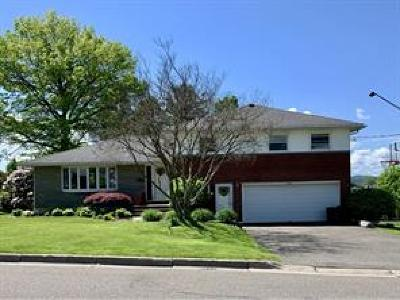 Endwell Single Family Home For Sale: 2704 Columbia Drive