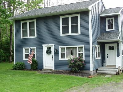 Apalachin Single Family Home For Sale: 210 McFadden Rd