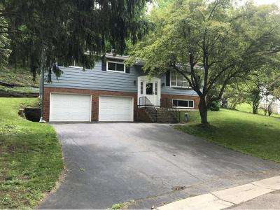 Vestal NY Single Family Home For Sale: $185,000