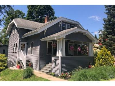 Owego Single Family Home For Sale: 23 Armstrong Place
