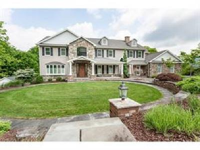 Vestal NY Single Family Home For Sale: $695,000