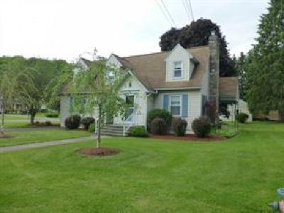 Newark Valley Single Family Home For Sale: 30 Franklin Ave.