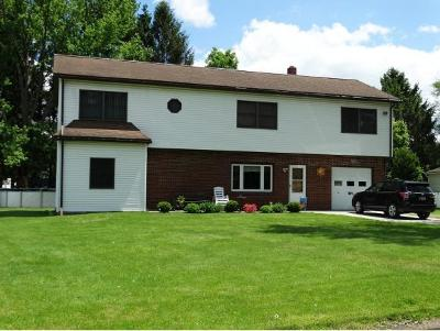Broome County, Cayuga County, Chenango County, Cortland County, Delaware County, Tioga County, Tompkins County Single Family Home For Sale: 8 Holmes Ave.