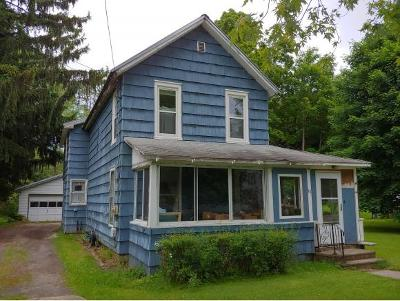 Newark Valley Single Family Home For Sale: 58 Maple Ave
