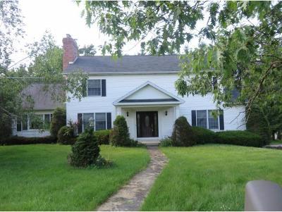 Endicott Single Family Home For Sale: 2653 Alexander St.
