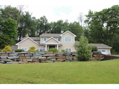 Endwell NY Single Family Home For Sale: $595,000