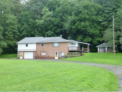Broome County, Cayuga County, Chenango County, Cortland County, Delaware County, Tioga County, Tompkins County Single Family Home For Sale: 804 Merritt Dr