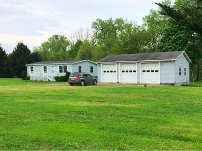 Owego Single Family Home For Sale: 1565 Straits Corners Road