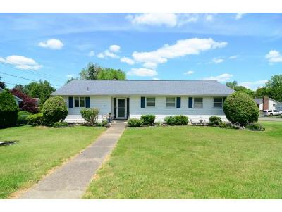 Apalachin Single Family Home For Sale: 17 Riverview Road