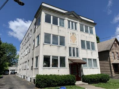 Binghamton Multi Family Home For Sale: 13 Mather Street