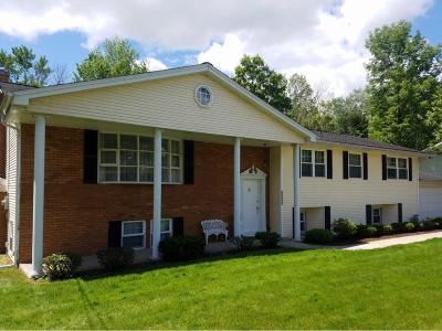 Vestal Single Family Home For Sale: 4508 Oxford Place